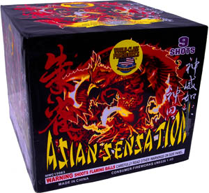 Asian Sensation by World Class