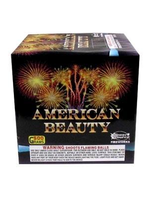America Beauty